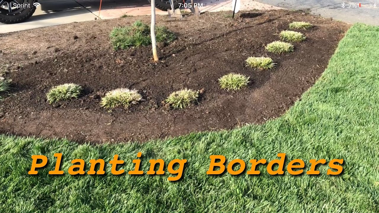 How To Plant Borders In The Landscape Youtube