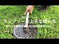 【草刈り】元植木屋が教える!チップソー(草刈機)の上手な使い方 A former gardener teaches! Basic usage of tip saw (mower)
