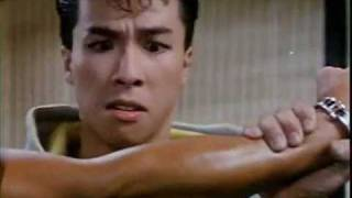 donnie yen demonstration in mismatched couples