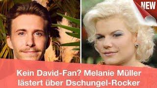 Kein David-Fan? Melanie Müller lästert über Dschungel-Rocker | CELEBRITIES und GOSSIP