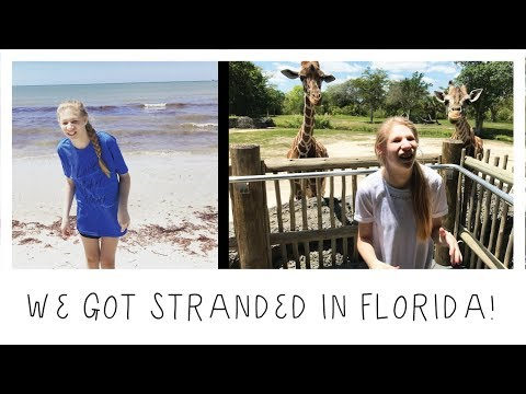 ADVENTURES IN FLORIDA -- FOLLOW US AROUND! 🌴🌞🌊🦒