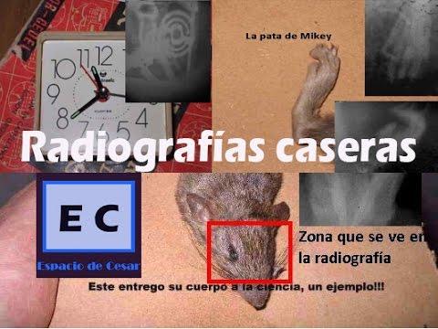 Radiografias caseras maquina de rayos x con lampara de TV  X ray made in house