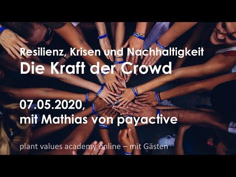Webinar Co-Creation durch die Crowd | Teil 4 - plant values academy, mit Gast Mathias von payactive