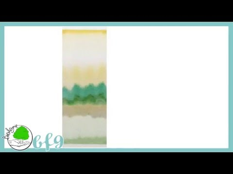 Pflanzenphysiologie - Chromatographie Von Blattfarbstoffen