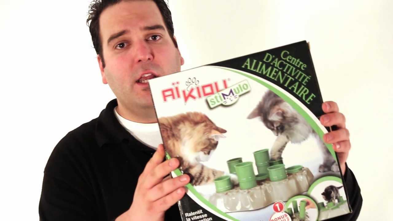 jeux pour chien et chat savant commandement sens le cherche youtube. Black Bedroom Furniture Sets. Home Design Ideas