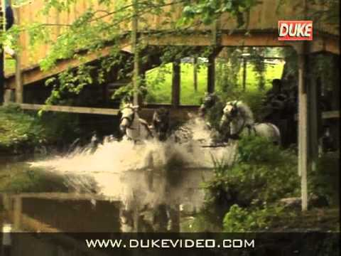Duke DVD Archive - This is carriage driving
