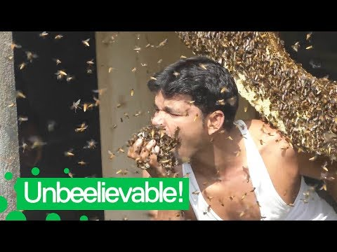 Man Stuffs Mouth with Hundreds of Live Bees