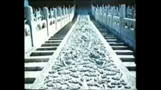 Императорский кордицепс китайский(http://yourcordyceps.jimdo.com/ Что такое кордицепс китайский, где растет гриб кордицепс и почему его называют Император..., 2014-11-30T23:51:16.000Z)