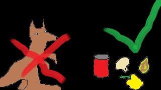 Non-kangaroo Stir Fry