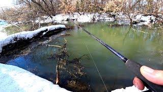 Коряга оказалась с сюрпризом! Рыбалка весной.