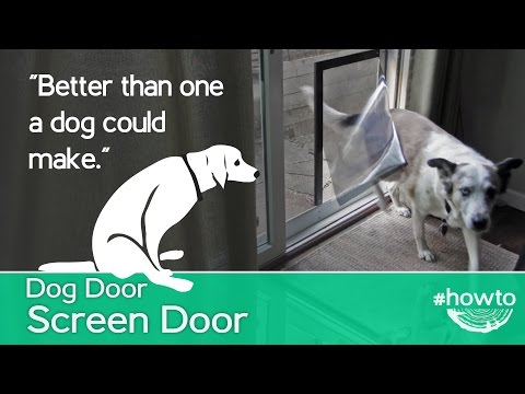 how-to-make-a-screen-door-doggy-door