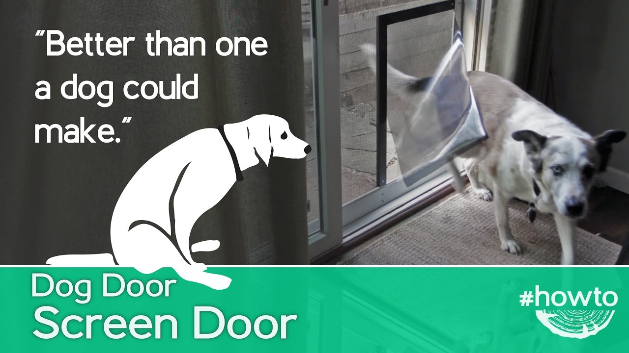 How To Make A Screen Door Doggy Door Youtube