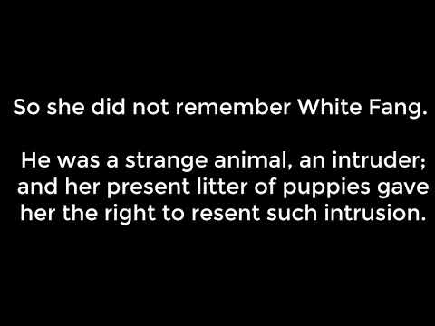 White Fang - 14 Chapter The Famine