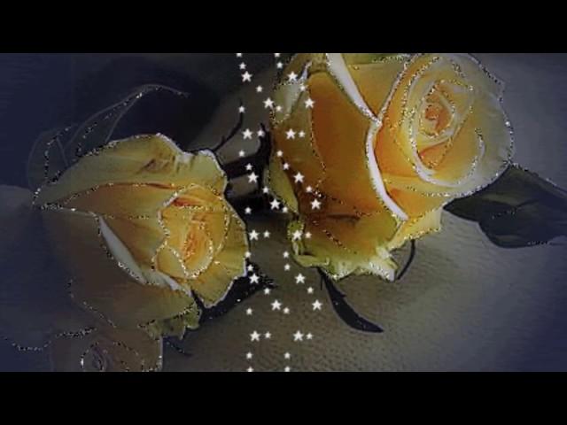 Boa Noite Meu Amor Cantinho Do Video