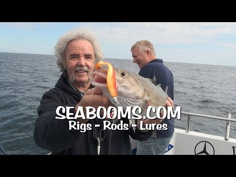 Seabooms Catch Them All Cod, Plaice, Pollock, Bass And Conger Eels