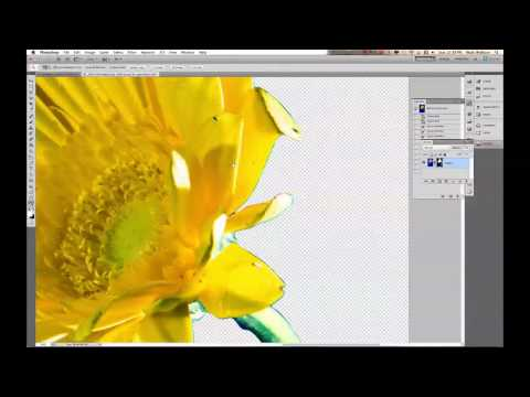 Clipping Paths: EP 218: Digital Photography 1 on 1