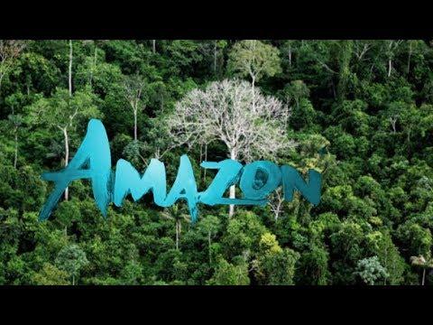Lihat Bagaimana Makhluk Aneh Ini Hidup di Hutan Amazon !