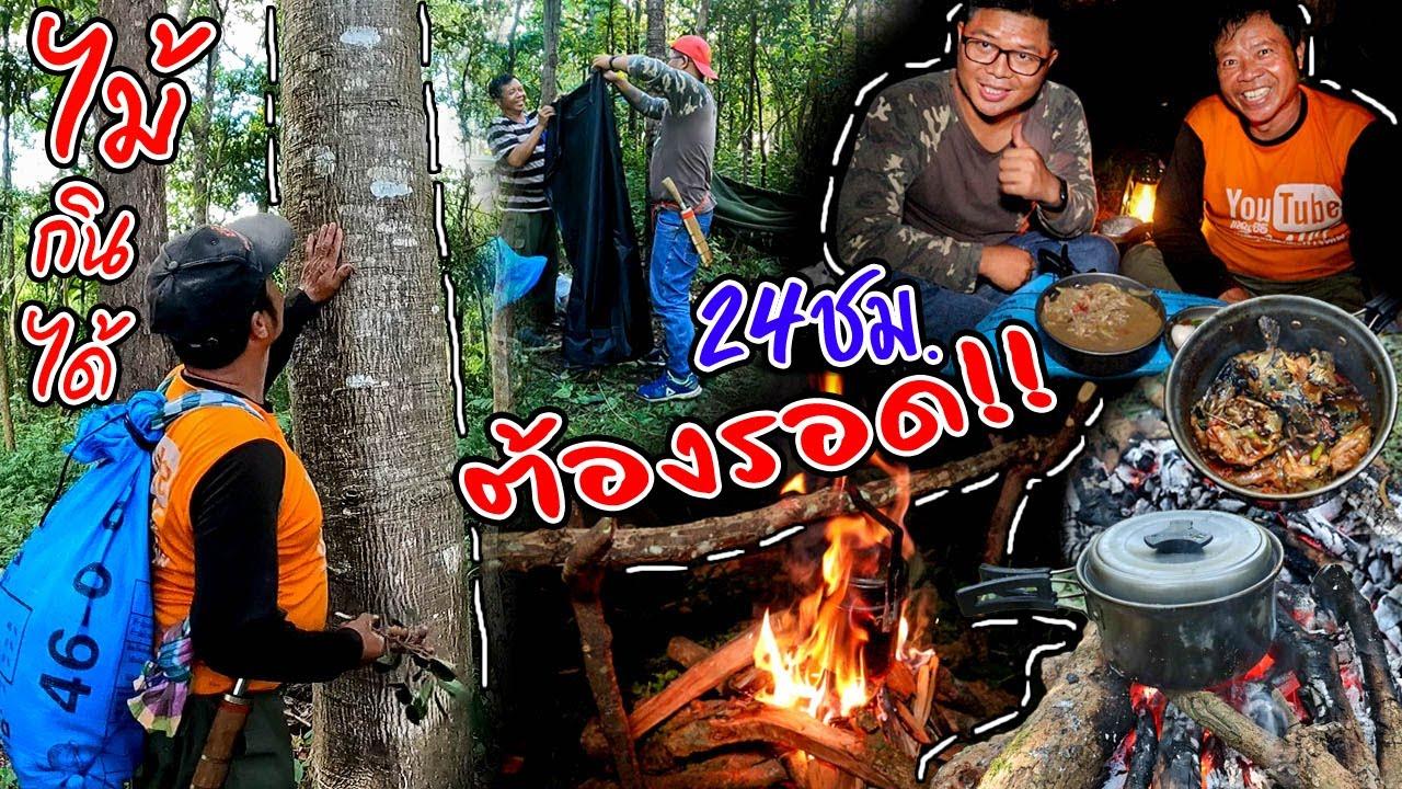เอาชีวิตรอดกับพ่อ EP.8 เอาชีวิตรอด 24ชม  เจอต้นไม้กินได้ อายุเกือบ100ปี l ครัวป่าไผ่ SAN CE
