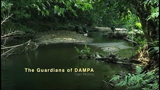The Guardians of Dampa