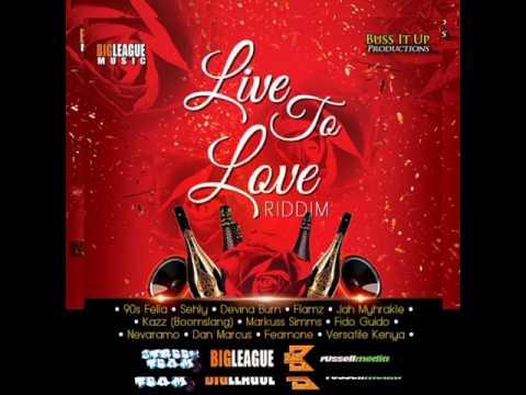 Live To Love Riddim Megamix | #2017