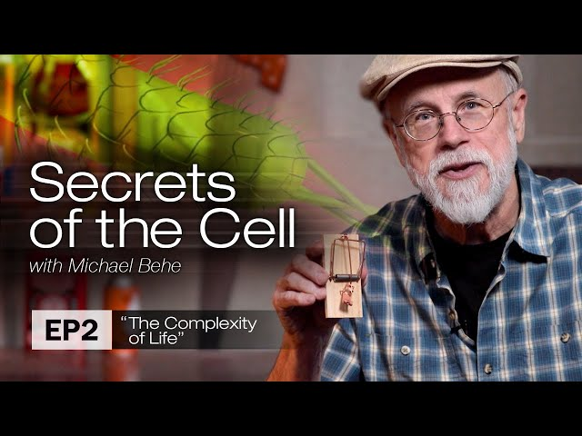 The Complexity of Life (Secrets of the Cell with Michael Behe, Ep. 2)