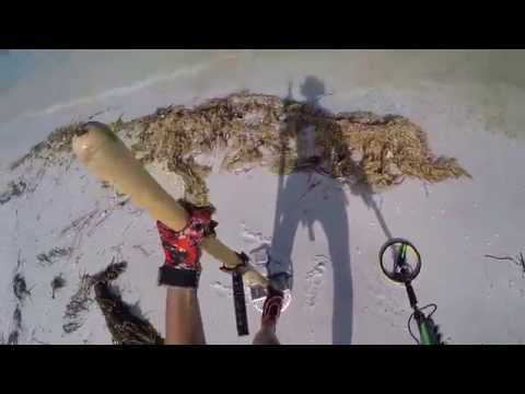 Metal Detecting Coin Beach with the Excal!