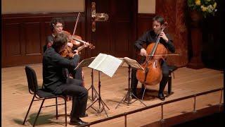 Daniel Sepec; Tabea Zimmermann; Jean-Guihen Queyras - Beethoven String Trios