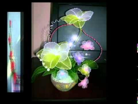 hoa mai voan
