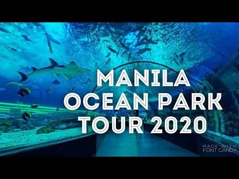 Manila Ocean Park 2020 Tour, Attractions, Zoo, Jellyfish, Oceanarium And More | Bubuchang's World