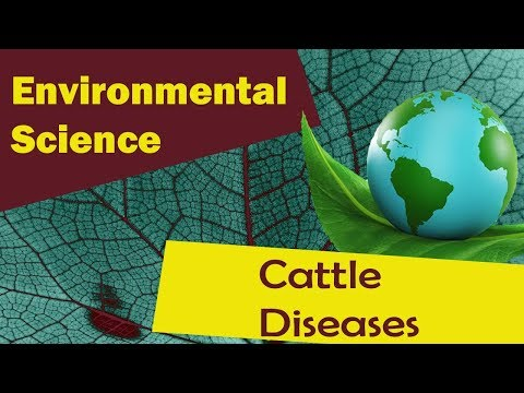 ANIMAL HUSBANDRY (cont...) | Cattle Diseases | Poultry Farmi