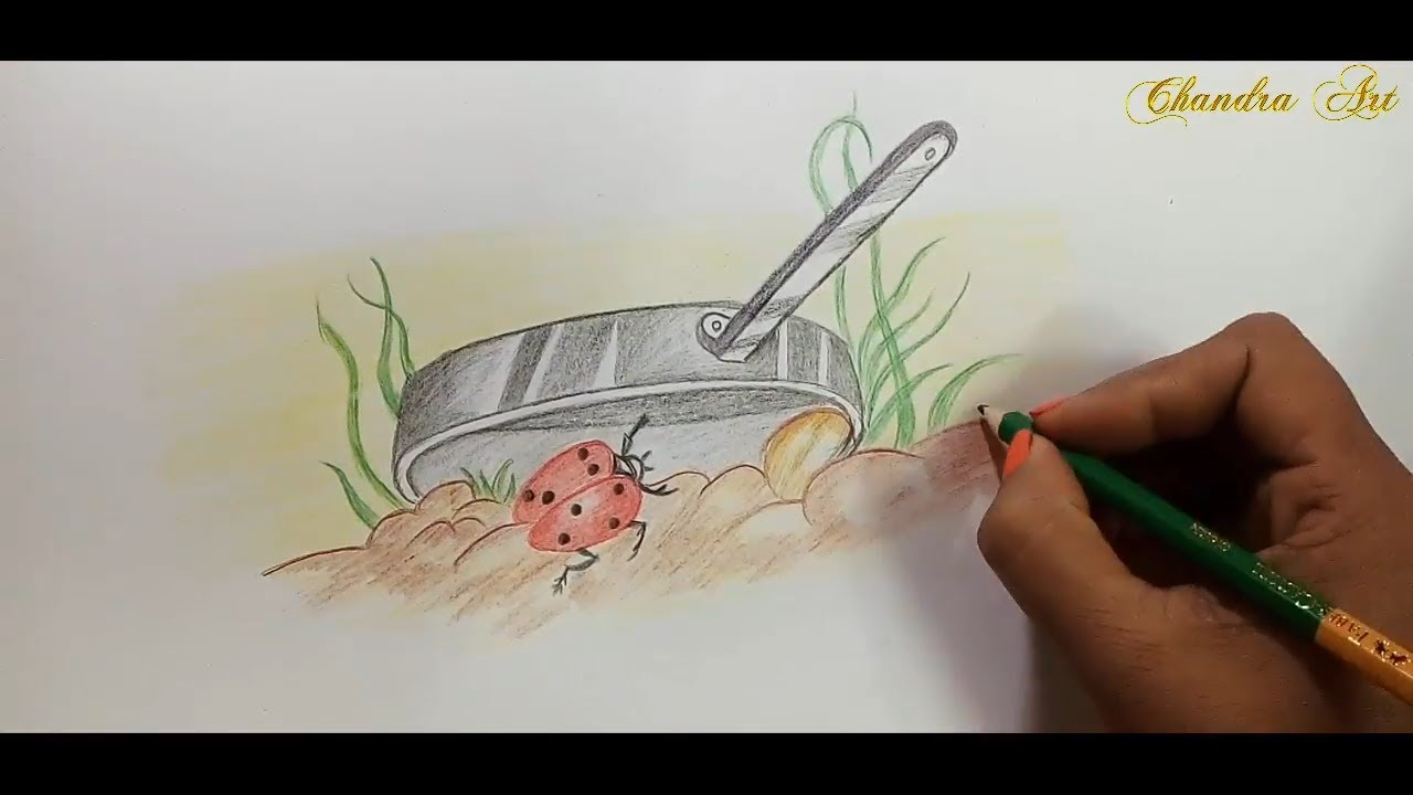 Color pencil drawing for beginners learn how to draw ladybird with colored pencils