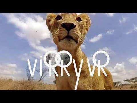 Virry VR Safari Gameplay Review with Gamertag JR  PSVR
