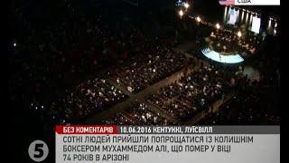 видео У Януковича незабываемая реклама
