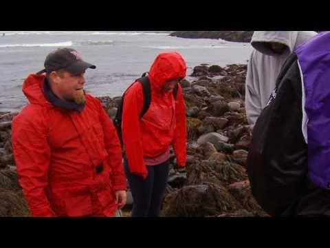 Professor Brian Penney, Marine Ecologist