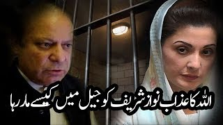 Nawaz Sharif is Crying in Adyala Jail For Having Worst Time of His Life