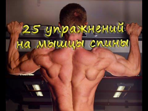 25 упражнений на мышцы спины в тренажерном зале