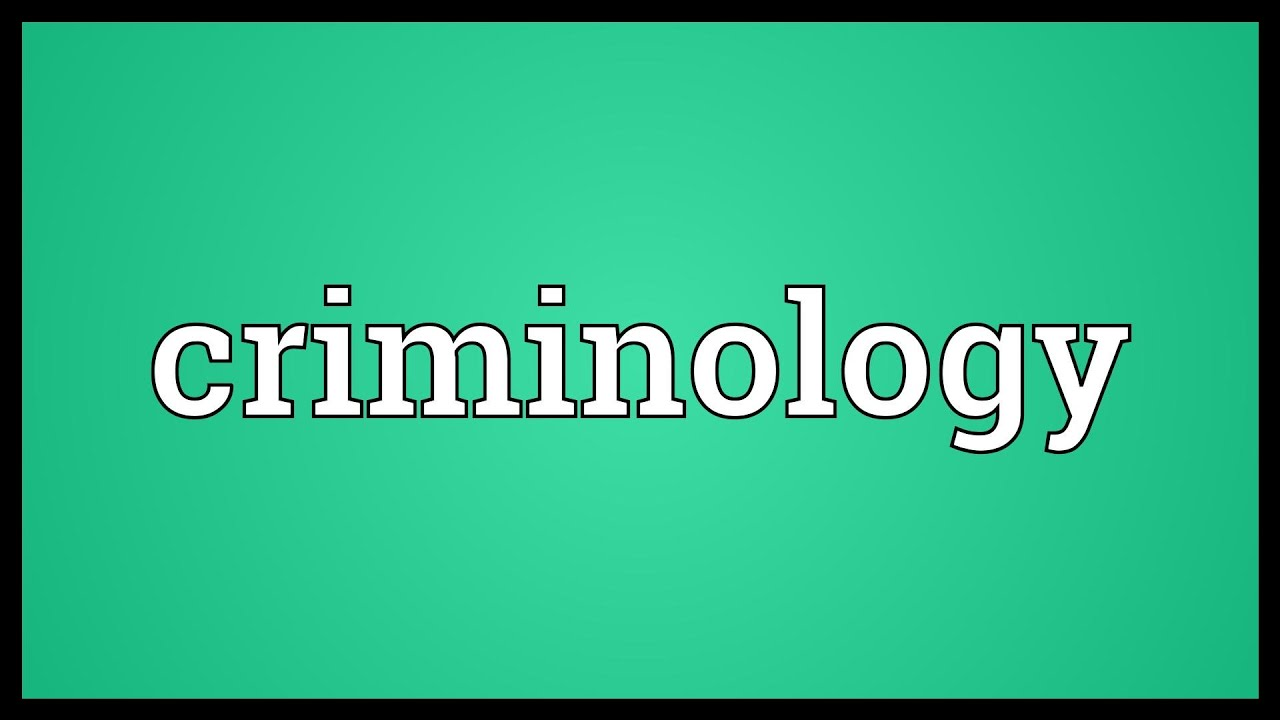 Essay criminology