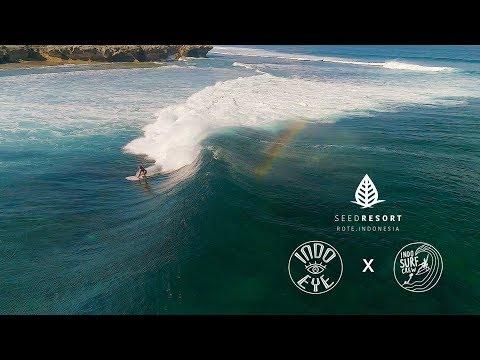 The tropical DREAM surf trip - Rote Island