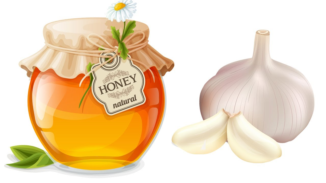 Why Garlic and Honey Good for Men? Garlic Health Benefits Raw Honey Benefits I HealthPedia I Garlic