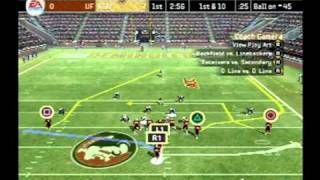 (Ps2) NCAA 07 Football (FSU vs UF)