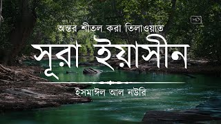 Heart Soothing Recitation of Sura Yaseen ┇ Recited by Ismail An Nouri ┇ An Nafee ┇ আন নাফী