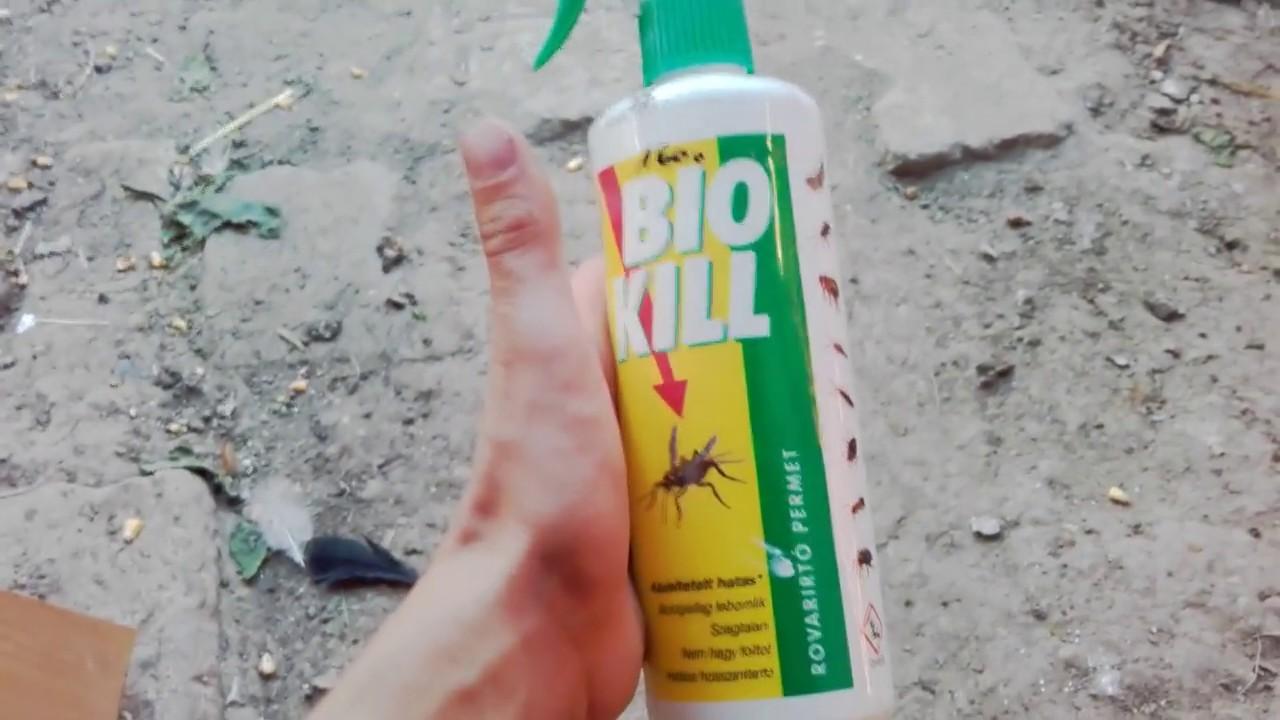 Chagas-kór