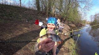 Рыбалка в Латвии Река Бриеде  Поплавок и донная снасть Рыбалка моей мечты