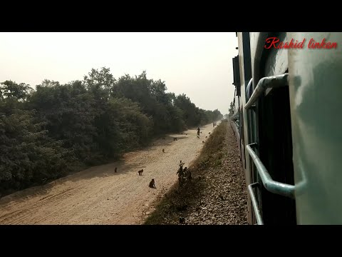 Bagaha To  panihawa / traveling by train /bagaha police  comp/ panihawa brize / Valmikinagar  Forest