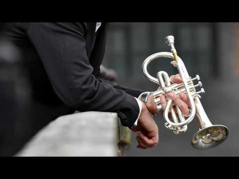 JS Bach Violin Partita No. 2 on a soprano cornet