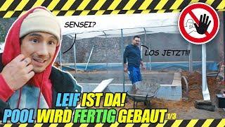 LEIF ist wieder da, jetzt wird der POOL FERTIG gebaut - im Highspeed Modus Bam Bam
