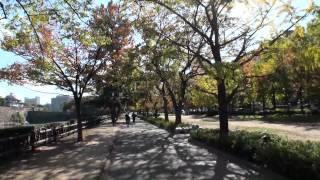 2012.11.16 森ノ宮駅から大阪城をぐるっと一周巡りました。 後編は刻印...