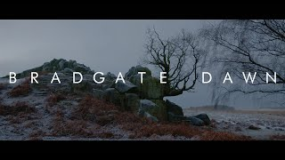 Bradgate Dawn | A BMPCC6K Short Film | B-ROLL | Nature