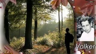 Volker (Günter Barde) Muß wandern. (SNB-Produktion-Ronny)
