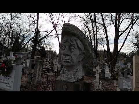 Am Facut Vlog In Cimitir!! Cimitirul Bellu, Aleea Actorilor, Artistilor Si Celebritatilor! 2,7k.